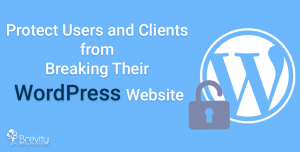 Protecting users and clients from breaking their WordPress website