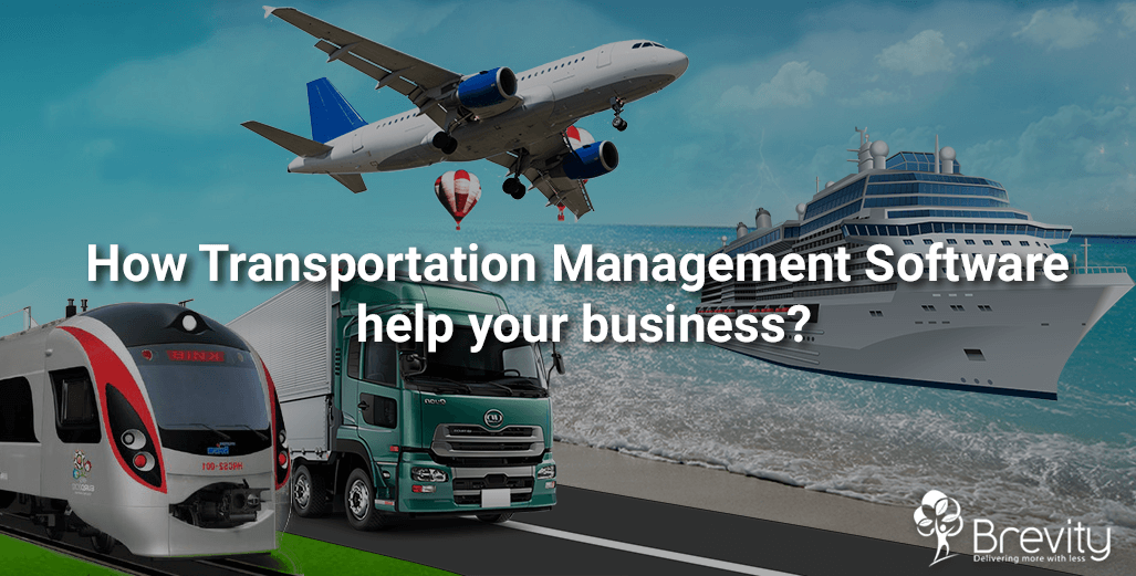 Transportation management software development